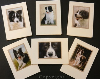 Pack of 6 assorted Border Collie Dog Portraits Hand Made Greetings Cards. From Original Paintings by JOHN SILVER. GCBCmulti01