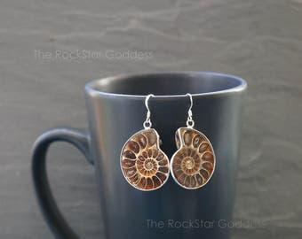 Ammonite Fossil ⊿ Ammonite  ⊿ Ammonite Earring ⊿ Real Ammonite ⊿ Ammonite Jewelry ⊿ Prehistoric Relic ⊿ Genuine Fossil ⊿