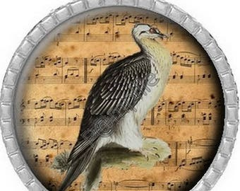 Round Cabochon pendant 25 mm epoxy resin - bird song (760)
