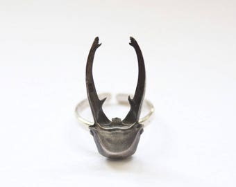 Bug ring Nature ring Scarab ring Insect ring Beetle ring Insect jewelry Oddities Insect Unusual jewellery Stag beetle ring Bug jewelry