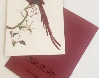 Greeting Card, Bird of Paradise, Epimachus
