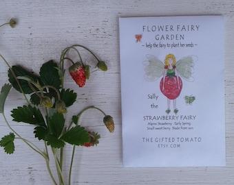 Strawberry Fairy garden seeds, Alpine Strawberry seeds organic seeds fairy house kids garden strawberry shortcake seed fairy garden