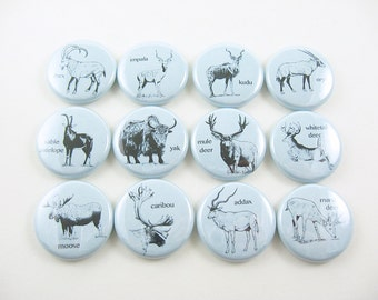 Matching Game or Fridge Magnets - antlered and horned animals educational kids school learning toys games puzzles