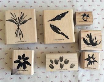 Retired Stampin up, Paint Prints stamps, Flower stamp,  Plant Stamp, ink stamp, leaf stamp