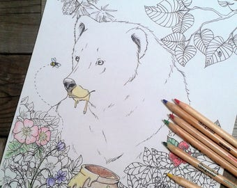 bear colouring page, forest colouring page, adult colouring, printable colouring page, bear with honey