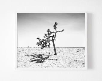 Black and  White Joshua Tree Print, Desert print, Joshua Tree Print , Printable California Wall Art, Desert Decor California Print