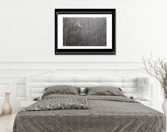Woodland Wall Decor-Rustic Wall Art-Cranberry Red-Gray-White-Log Cabin Photography-Birch Tree-Forest-Fine Art Horizontal Print-Cottage Art