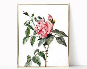 Floral botanical watercolor wall art print instant download