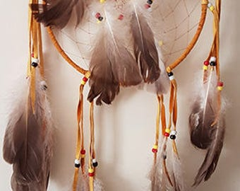Dreamcatchers, First Nations, Native, Indigenous, Dreams, Indian