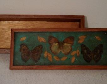 wood box with lid, small wood box, wooden box, butterfly box, wood keepsake box, wood trinket box, vintage wood box, treasure box vintage