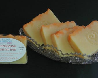 Conditioning Shampoo Bar with ProVitamin B5 (Panthenol) - No Silicones - For Clean, Silky Hair