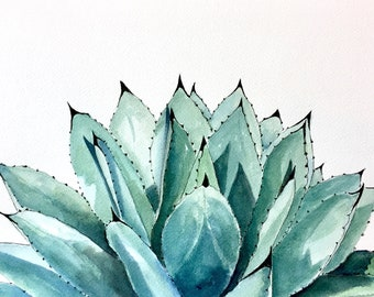 Agave Colorata, original watercolor, 8x10 inches, succulent done in cool colors