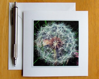 Dandelion Card, Photo Note Cards, Dandelions, Flower Note Cards, Notecards, Stationery, Handmade Cards, Blank Cards, Nature Note Cards, Card