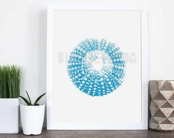 Sea Urchin, Sea Urchin Wall Decor, Digital Download Art, Wall Art, 8x10, PDF