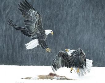 EAGLE BATTLE 11x14 signed print wildlife best selling art wildlife nature bald eagle