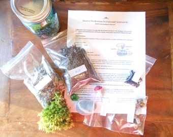 Do It Yourself Terrarium Kit Featuring Blue Vintage Inspired Ball Mason Jar And Live Moss