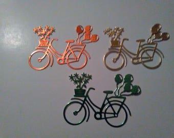 Bicycle Embellishments