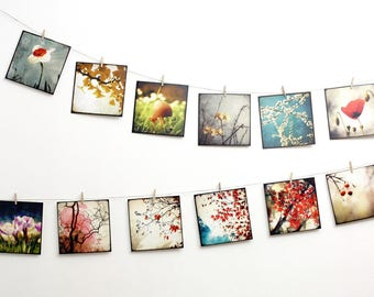 Set of 12 art postcards - set Nature 03