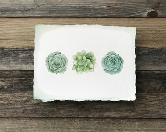 Watercolor Succulent Art Print with Torn Edges | Art Print | Watercolor Succulence | Gifts for the Home | Gifts for Her | Succulent Wall Art