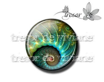 PA436 manual glasses Retro, snails, Swirl, spiral cabochons