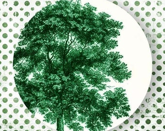 Tree II, Emerald Green plate