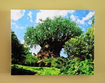 Règne animal arbre de vie 11 x 14 Galerie toile portefeuille