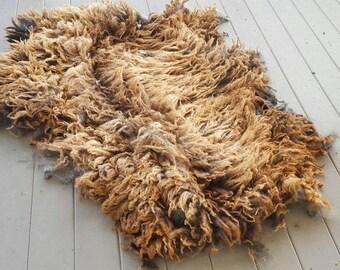 Purebred Coopworth Fleece Ram