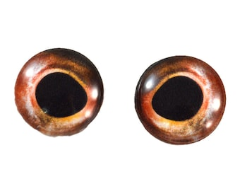 Glass Eyes Taxidermy - 16mm - Glass Eyes - Red Trout