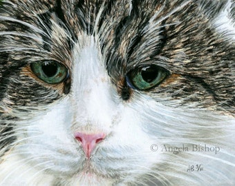 Cat Painting Print, Closeup, Pastel, Pet, Cat, Realism, Art Print, Reproduction, Nature, Giclee, Realism, 8 x 10
