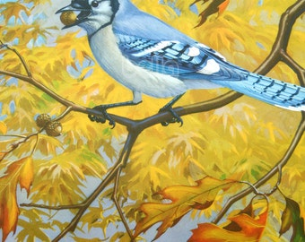 Vintage BIRDS Print - Blue Jay  - 1930s Book Illustration by Walter Alois Weber
