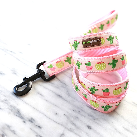 Desert Cactus Dog Leash