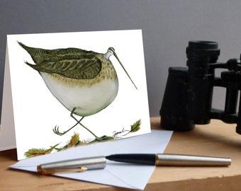 Snipe Bird fun greeting card