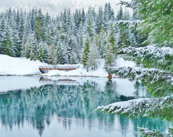 Stunning Winter Scenery Alpine Lake Wooden Bridge Snowy Ground & Evergreen Trees Reflected on Water 8 X 10 Glossy Washington State Nature