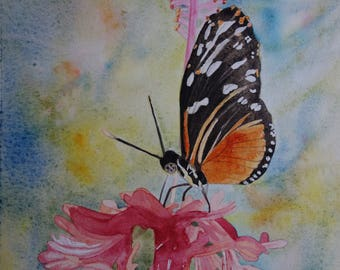 Floral watercolor: butterfly on pink hibiscus