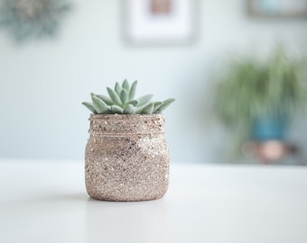 Rose Gold Succulent Planter, Mason Jar Planter, Small Plant Pots, Mini Glass Pots, Mini Planter, Cactus Pot, Desk Decor