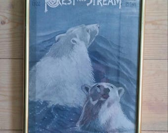 1922 Forest and Stream framed cover illustration: Polar Bears