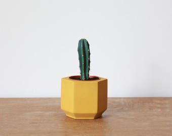 Small Yellow Hexagon Planter perfect for a Cactus or Succulent Plant // Colourful Plant Pot - Handmade