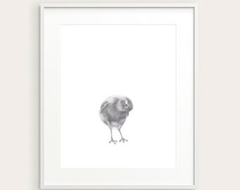 Little Bird. Nursery Art Print. Baby's Room Decor. Kids Wall decor. Kids Room Print. Baby Animal Print. Nursery Decor. Baby Wall Art