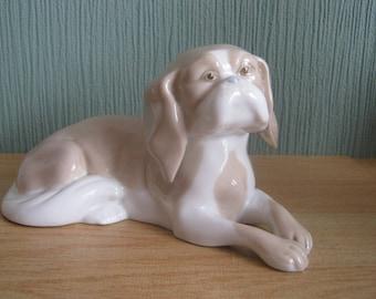 Porcelain Dog by Porceval Valencia