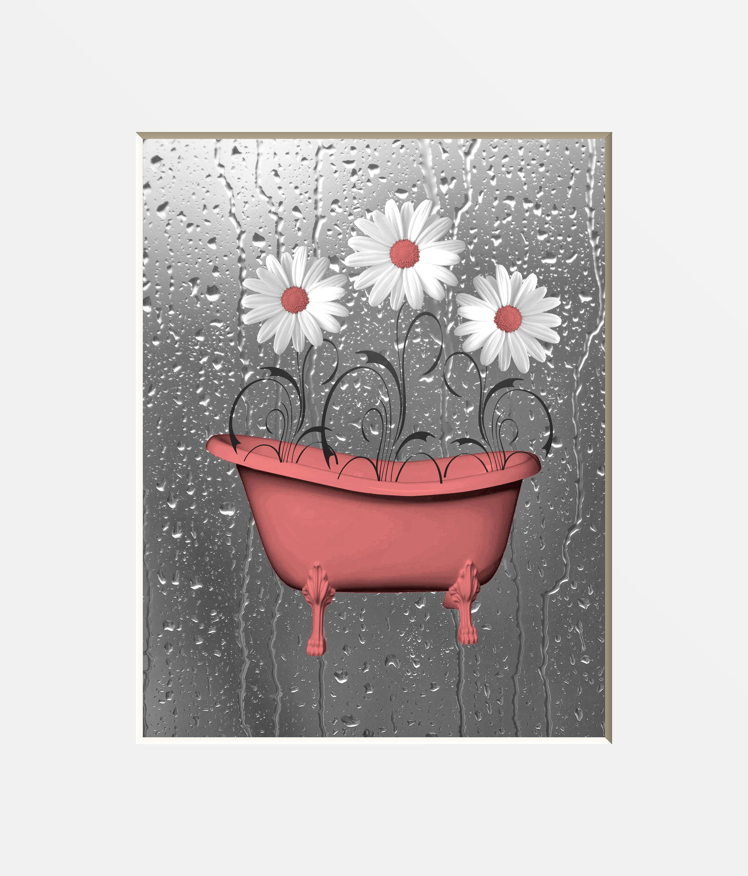 Coral Gray Bathroom Wall Art Pictures. Daisy Flowers