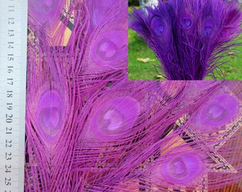 10pcs 30cm purple peacock feathers