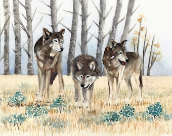 Three Wolves Among the Aspens in Yellowstone National Park Original Watercolor Painting