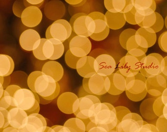 Twinkle Lights : shimmer sparkle glimmer yellow gold holiday photography bokeh circle modern abstract decor 8x10 11x14 16x20 20x24 24x30