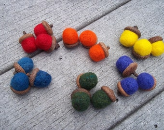 Rainbow Acorn Sorting Toy Needle Felted with storage bag