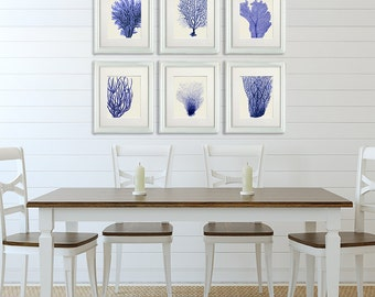 Blue Coral Prints 1 Set of 6 - Nautical print sea picture beach decor wall decor painting picture beach house bathroom decor nautical decor