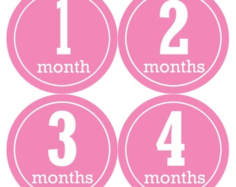 Baby Monthly Stickers, Baby Girl Monthly Stickers, Milestone Stickers, Baby Girl Month Sticker - Baby Girl, Girl, Baby Shower Gift 344