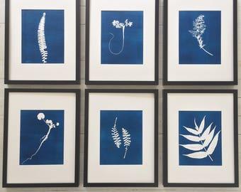 Blue Botanical Prints, Set of 6 Framed, Hand pressed botanical, cyanotype style, Christmas art, Christmas gift ideas, Wall art set, Ferns