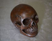 Skull | Hand Casted Reinf...
