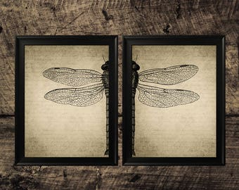 Dragonfly vintage print, dragonfly art, wings art, dragonfly wall decor, dragonfly printable art
