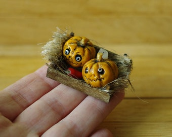 Pumpkin in the box.Halloween. Miniature pumpkin. Dollhouse witches . Pumpkin Eye for witch house. Scale 1/12